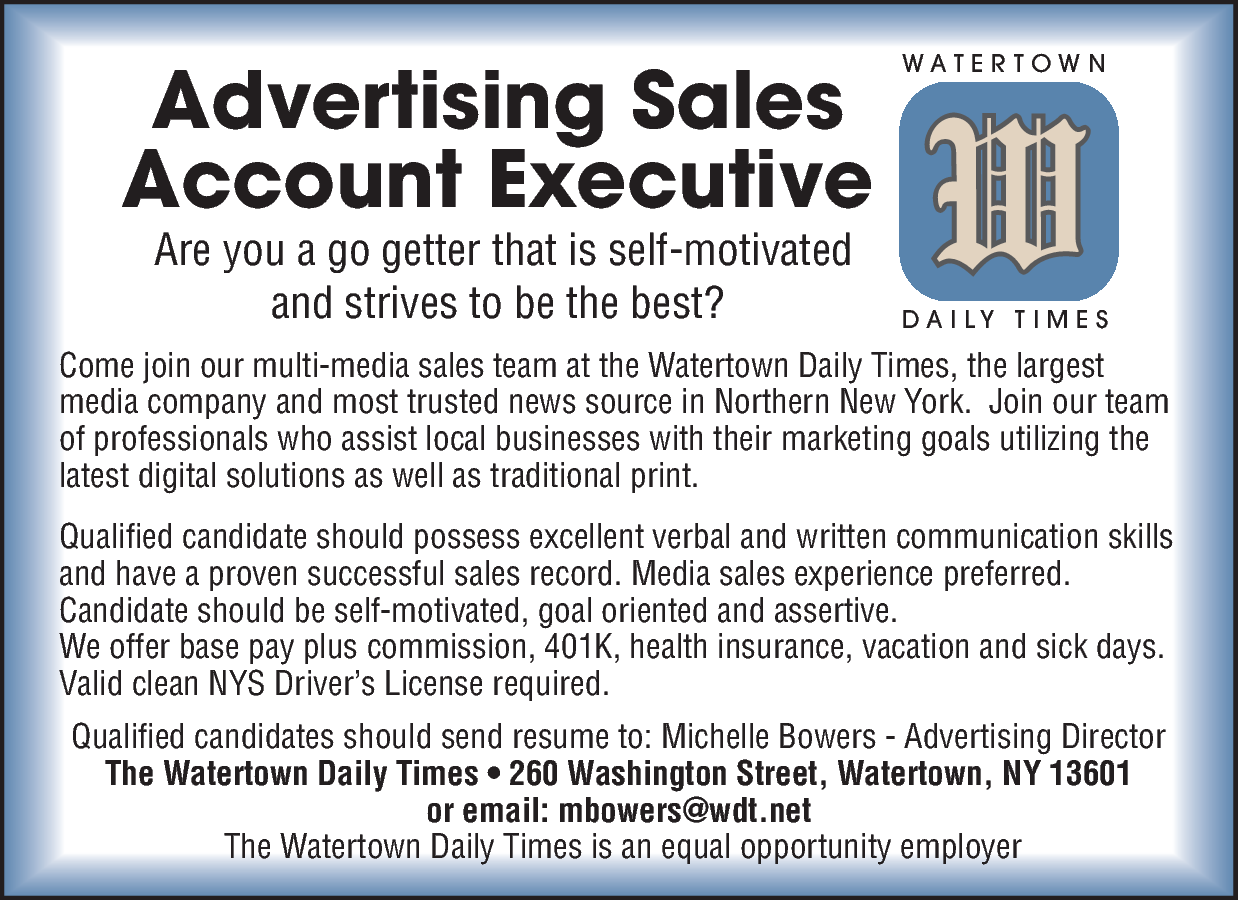 advertising account executive daily mis blank resume layout